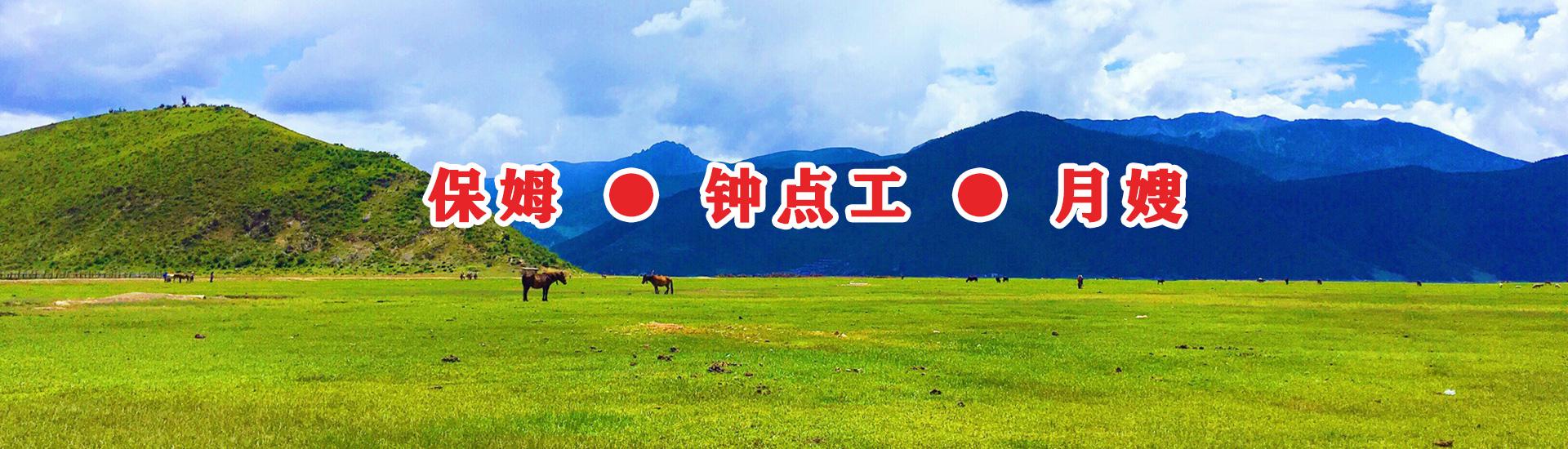 家(jia)政公司